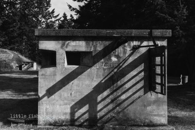 Concrete buildings and shadows