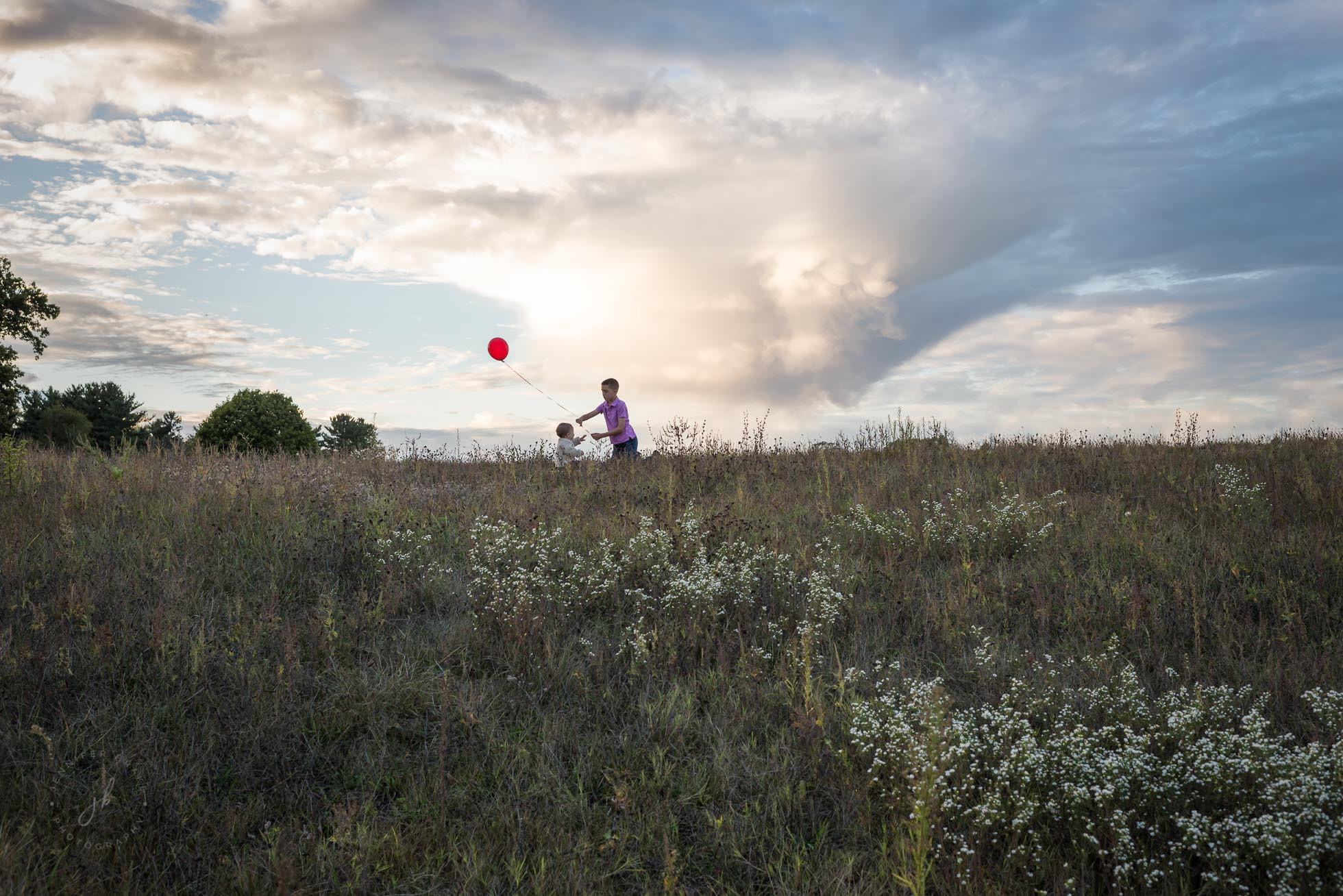 A big brother shares his red balloon with his baby brother while sitting atop a hill of wildflowers in South Bend, Indiana.