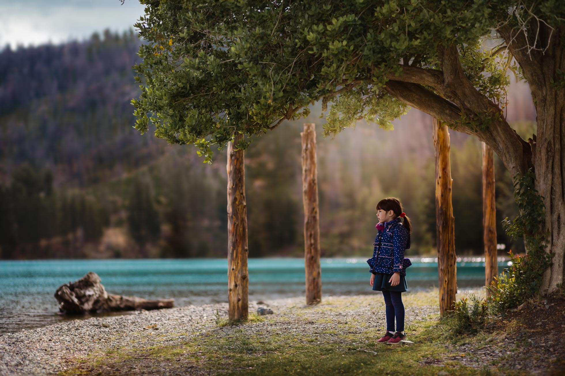Framed by nature by Monica Cutraro