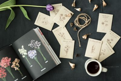 seed packets, book, coffee ready for spring