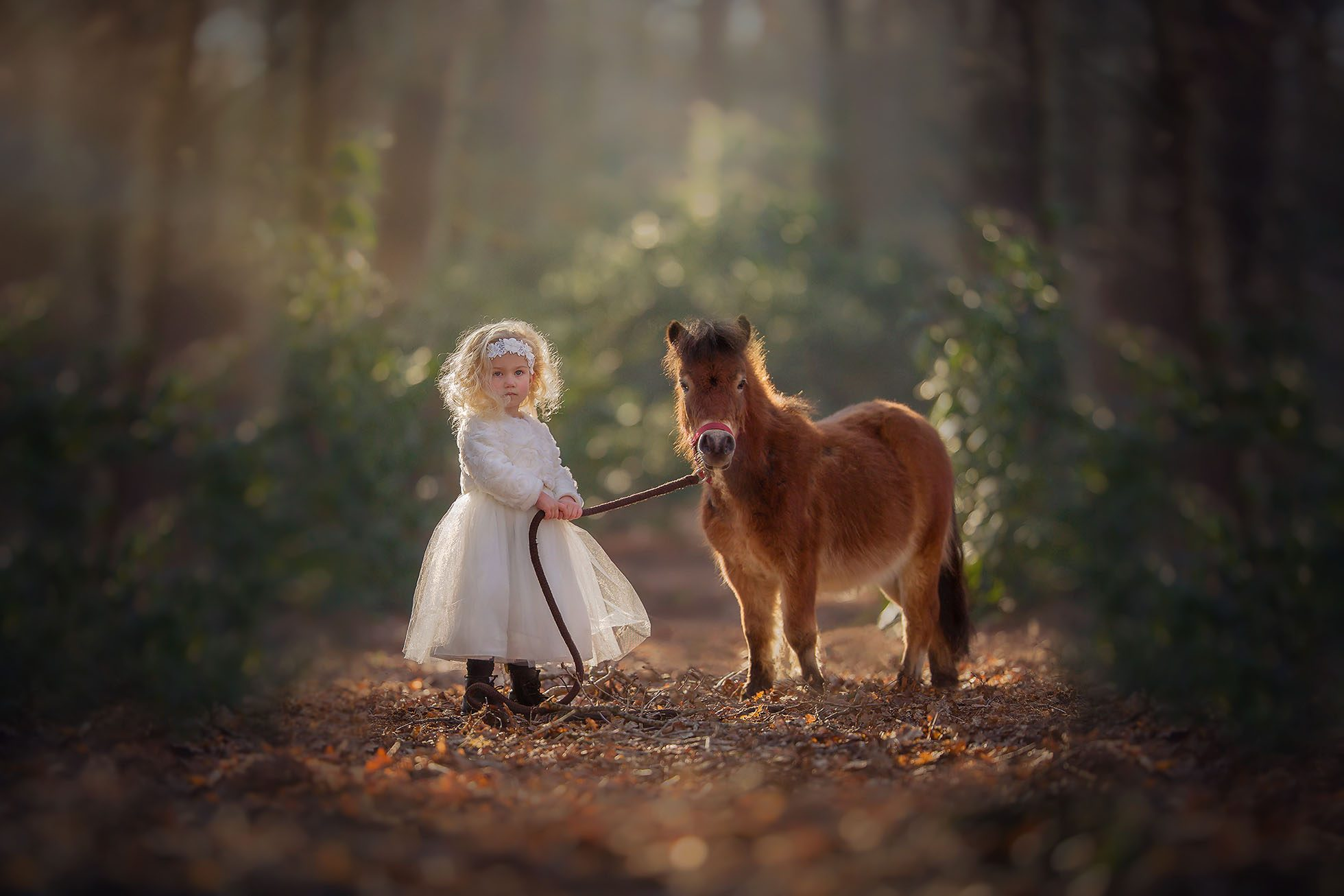 dreamy color Canon portrait of a curly little blonde girl standing in the forest with a small horse by Willie Kers