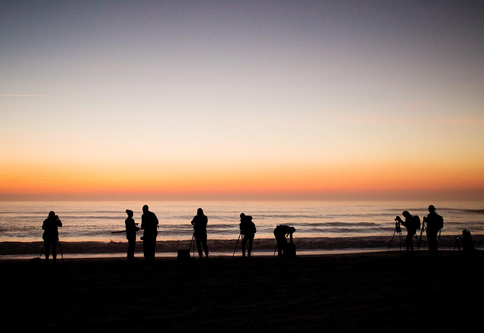 photographers at the beach at sunrise