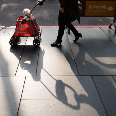 white_dog_in_a_red_stroller_in_taiwan_Street_Photography_by_Rebecca_Hunnicutt_Farren