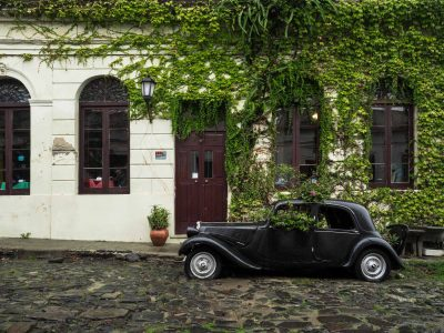 Image of bistro car that is parked in front of vine covered wall.