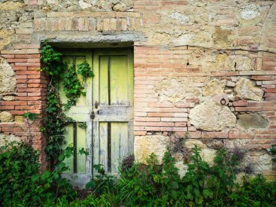 Photo of an old lime green door with vines going on it in Tuscany, Italy