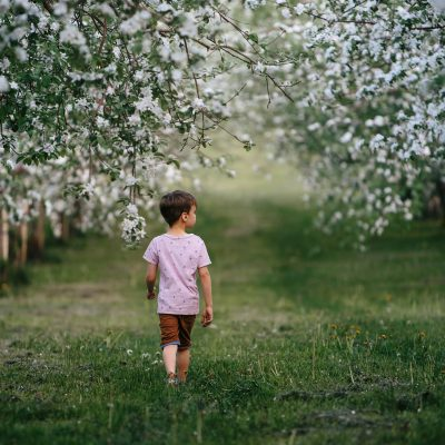 apple_orchard_blooming_boy_walking_faceless_trees_annick_simon_photographe_famille_quebec
