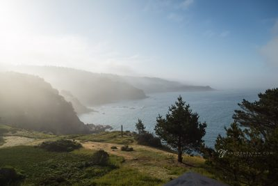 foggy Timber Cove northern California