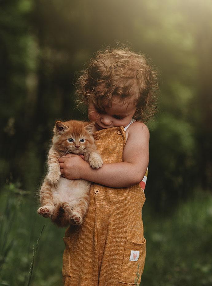 Kitty Love By Andrea Martin