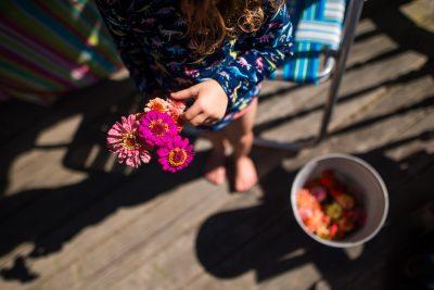 girl holding bunch of fresh cut local zinnas from summerhouse flower co