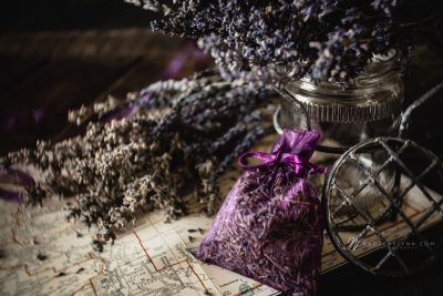 dried Oregon lavender on an Oregon map