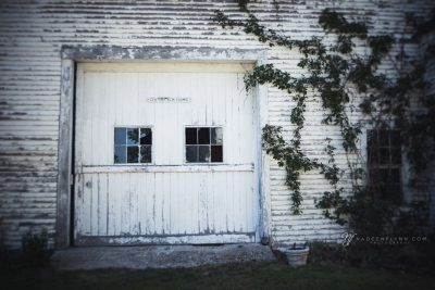 white barn photographed with the lensbaby burnside 35