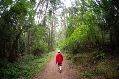 Boy hiking in the woods of the Pacific NW by Shelly Niehaus Photography