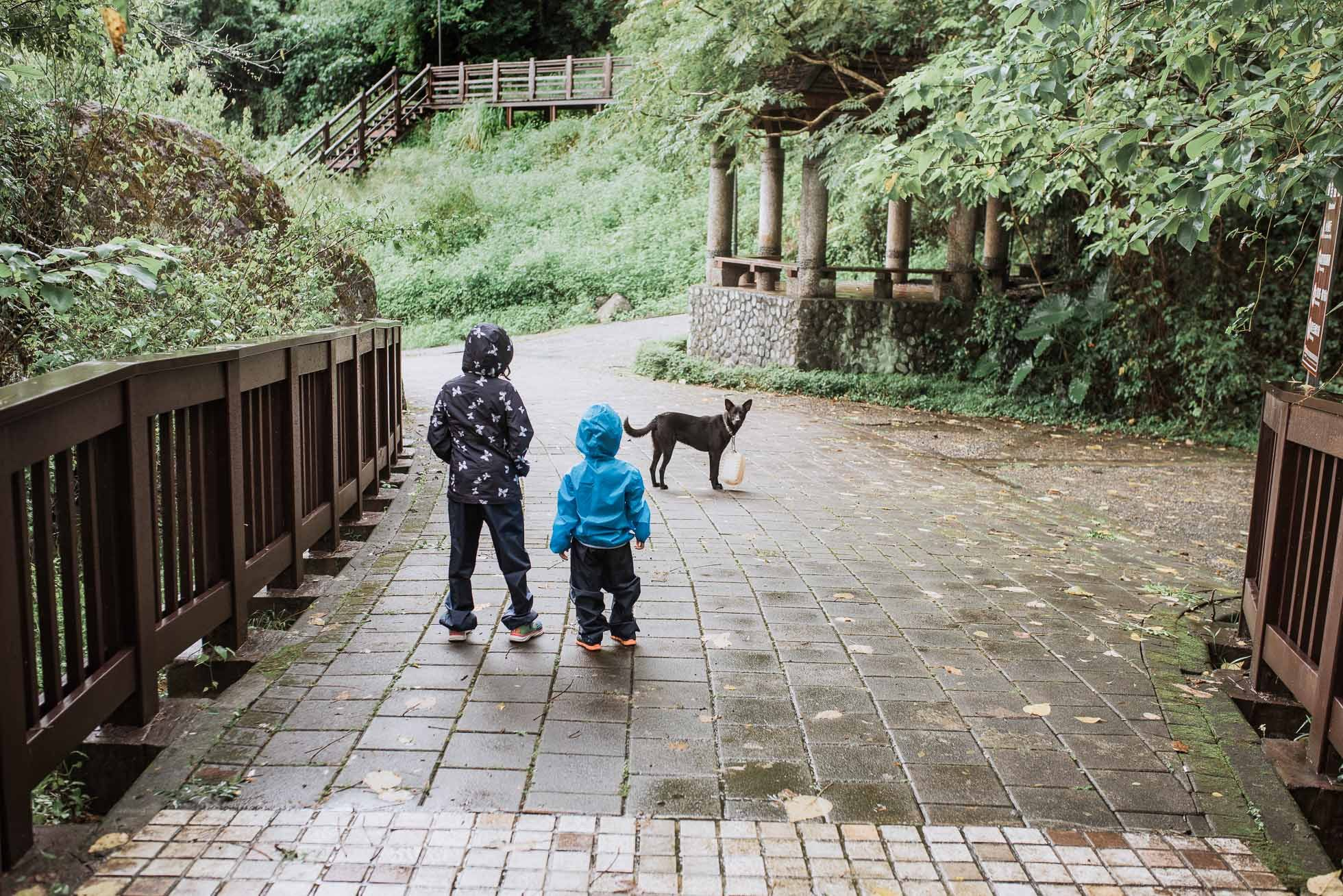 kids in the rain making friends with a dog in Taiwan