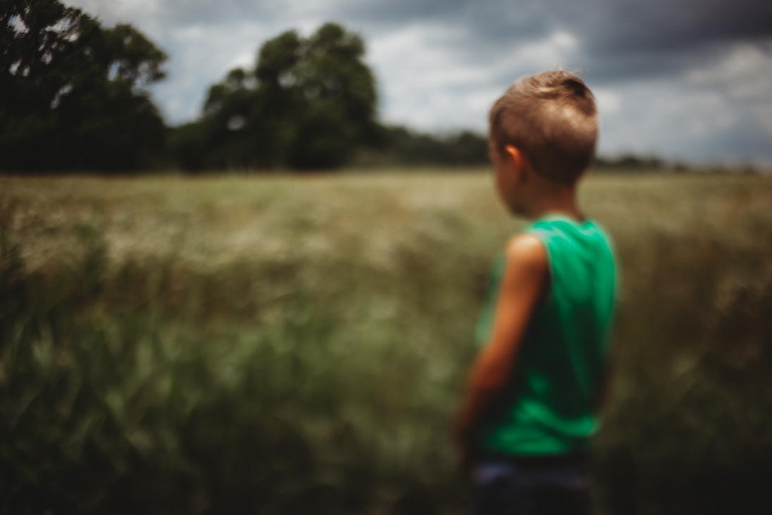 field of dreams by tanya moon tanya lorraine photography