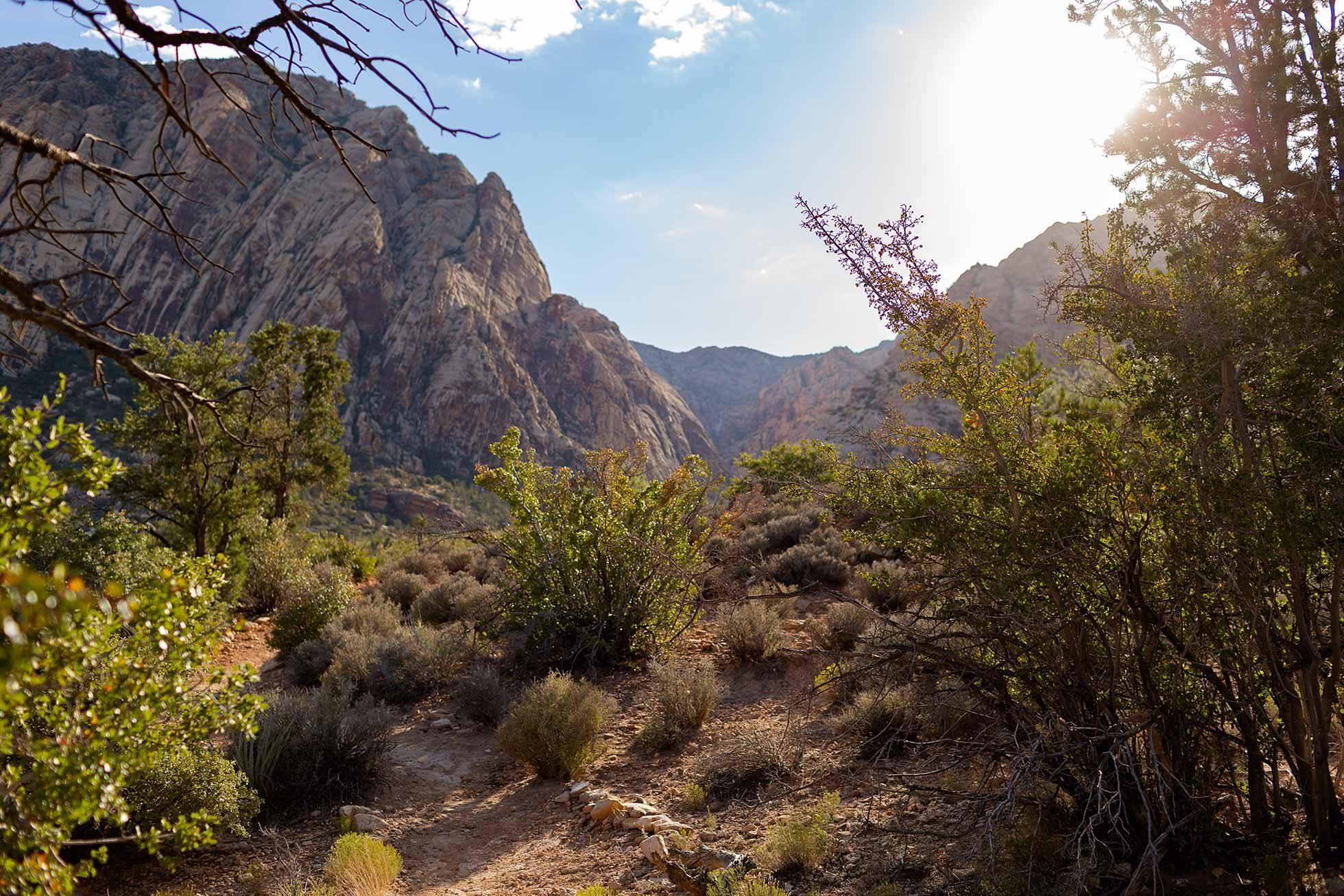 spring-mountain-ranch-las-vegas