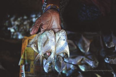 A lady shows fish for sale at a fish market in Goa, India, by Kirsty Larmour
