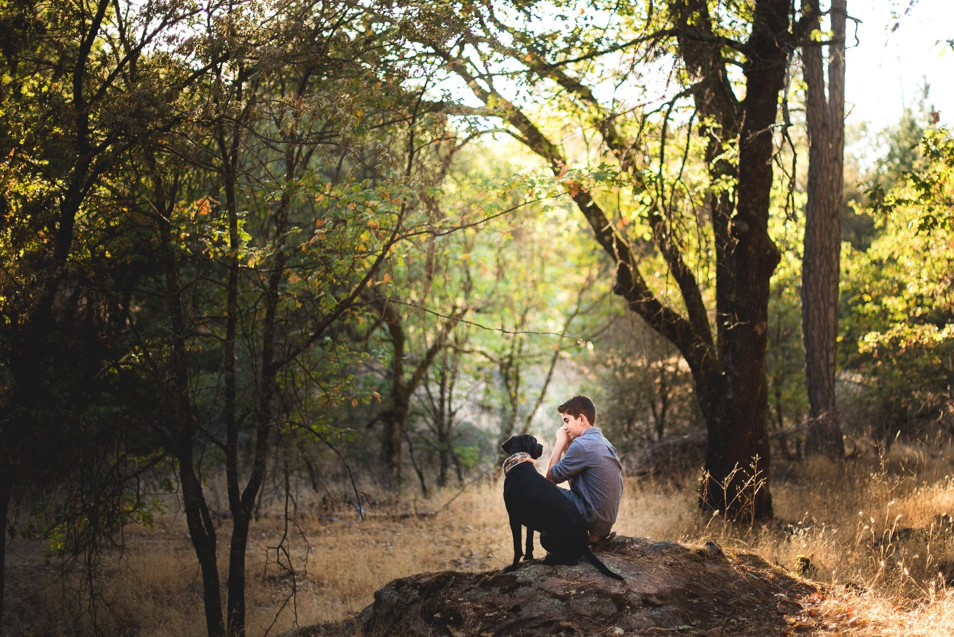 Boy and labrador retriever sitting on rock in forest
