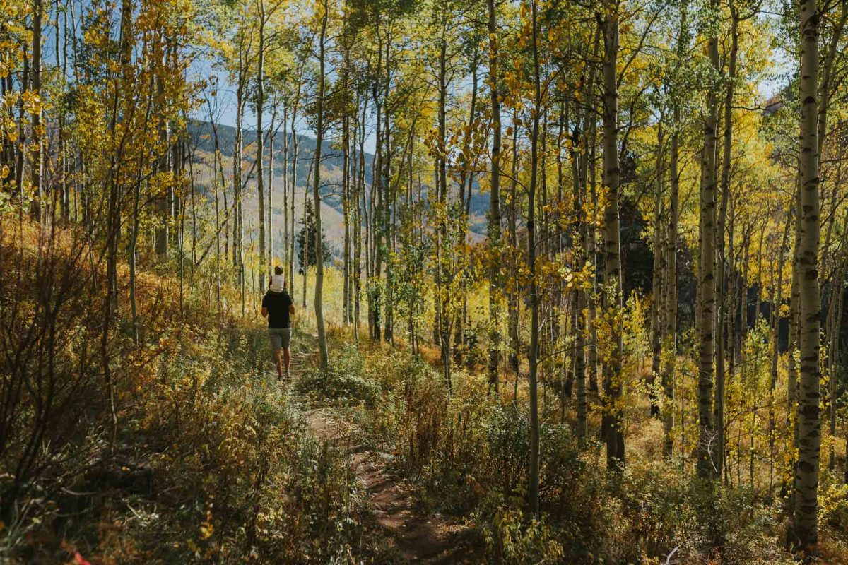 Northern Colorado Family Photographer   Colorado Family Photographer