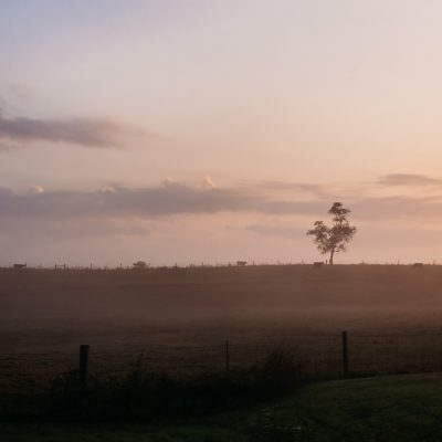 Country Sunrise (1 of 1)