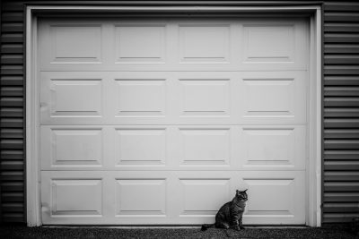 A black and white photo of a cat sitting in front of a big garage door.