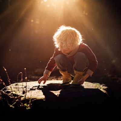 color-photo-of-curly-haired-boy-illuminated-by-sunlight-playing-on-a-stump-in-redwood-forest-at-Te-Mata-Peak-in-hawkes-bay-new-zealand