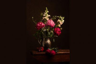 Peony flower still life