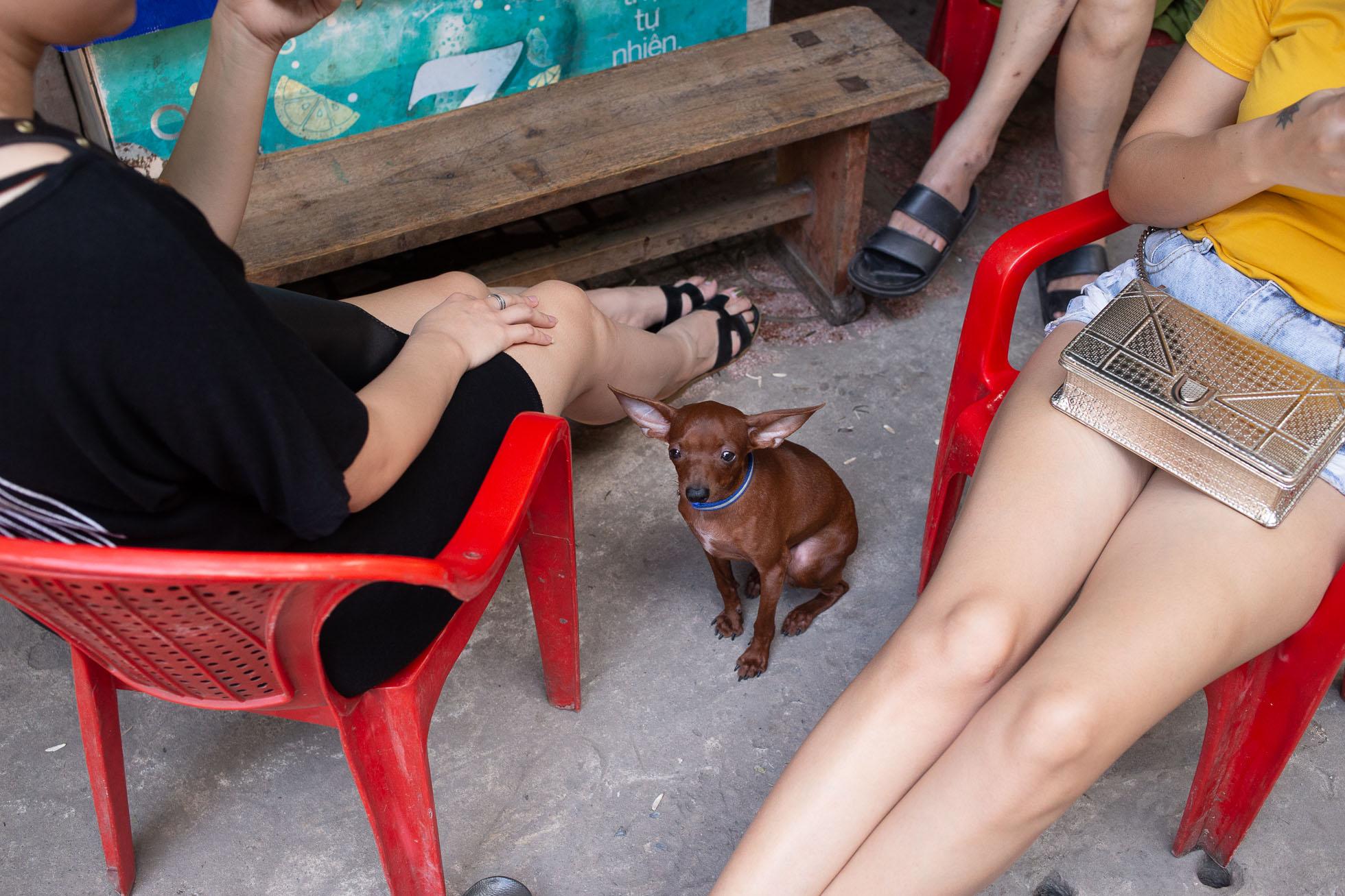 BiancaJKlein_Hanoi_Vietnam_Street-9967