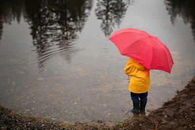 rain and pond