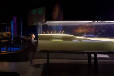 boy-looking-at-wave-tank-in-museum-with-artificial-light-1