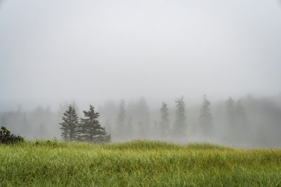 2018.07.25 Acadia National Park Maine © Jennifer Carr Photography-2