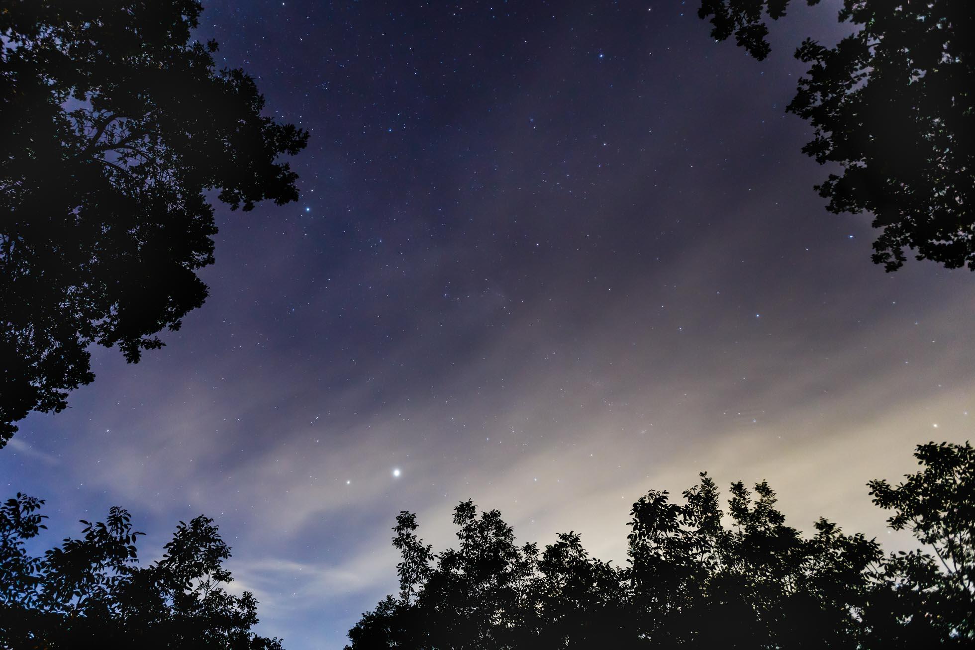 *Jupiter-and-Friends-©Nadeen-Flynn-Photography