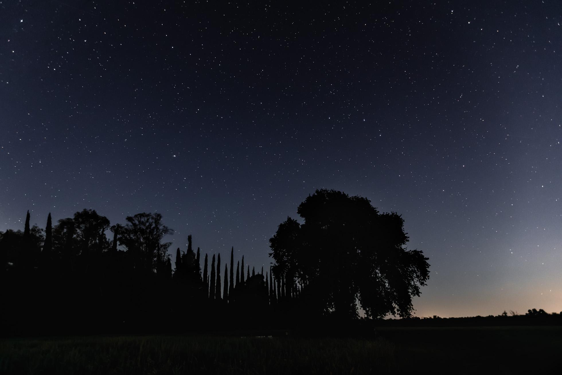 *Northwestern-Stars-©Nadeen-Flynn-Photography