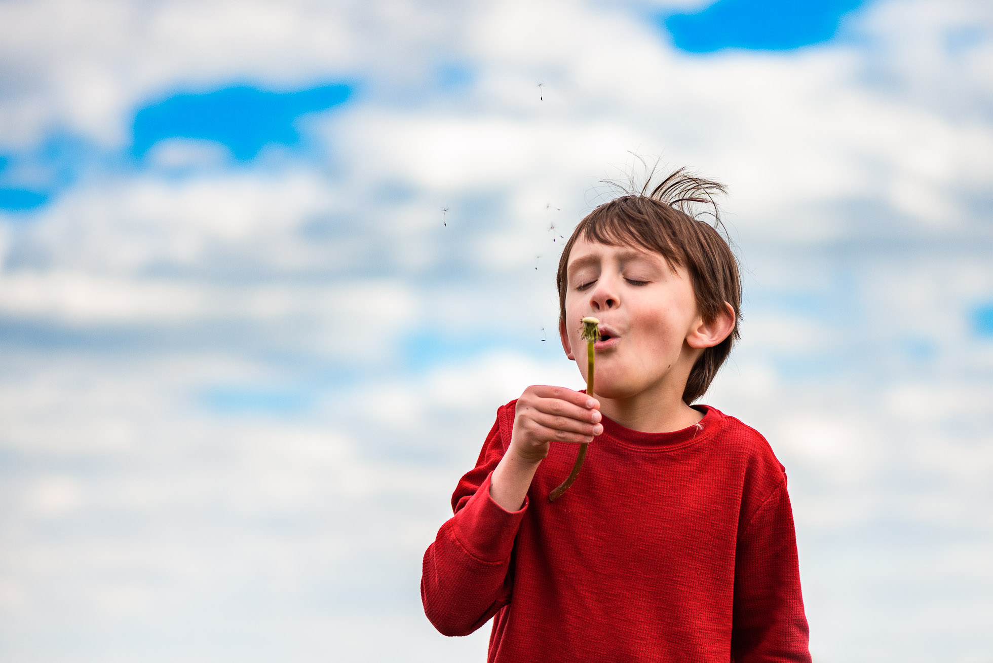 a boy blowing a dandelion with a big blue skky