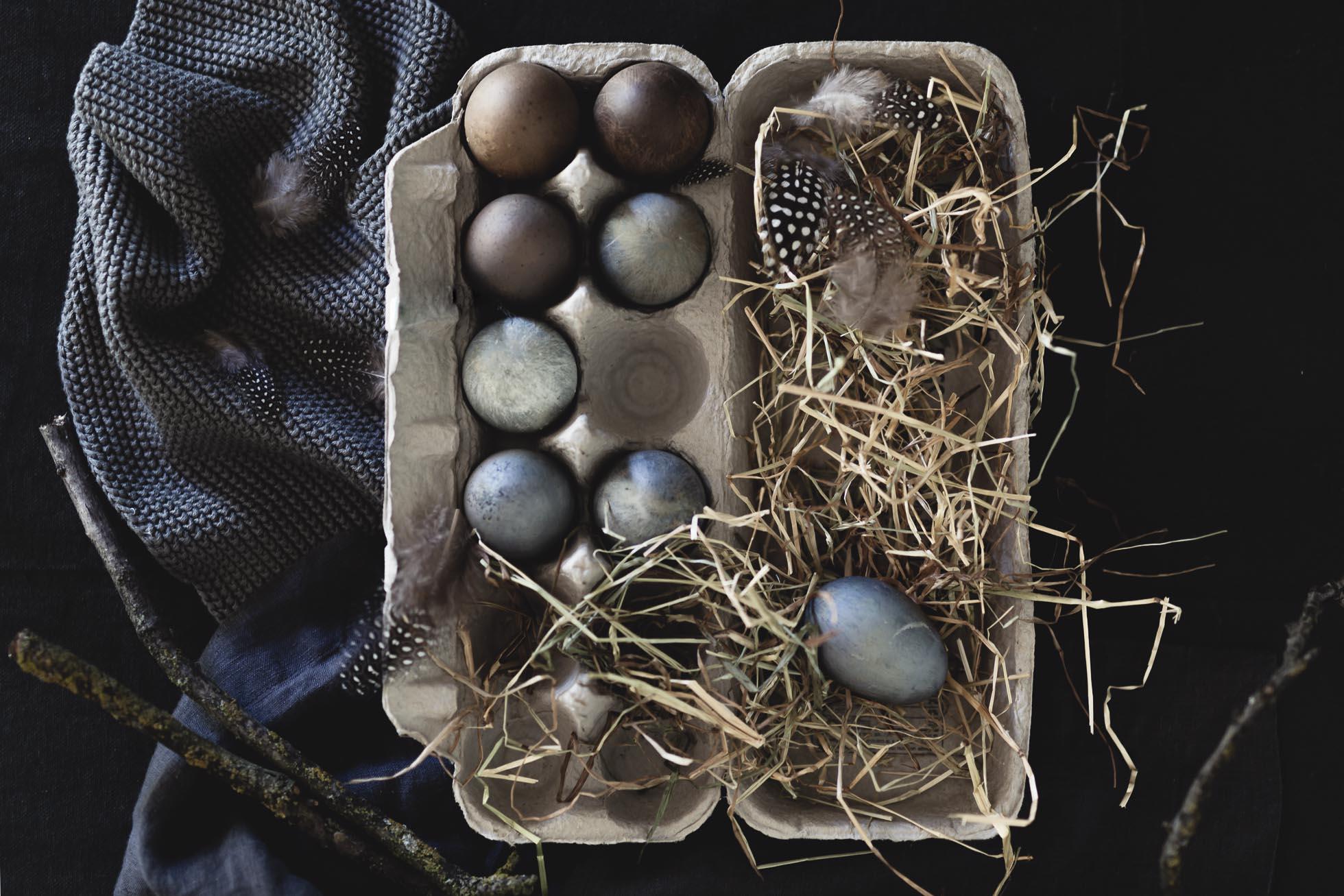 *Egg-Carton-Still-Life-©Nadeen-Flynn-Photography