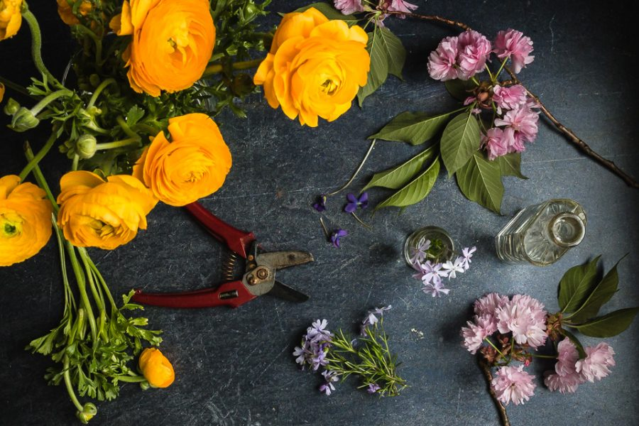 pieces of spring. #mediumboards #themindfulapproach #stilllife #flatlay